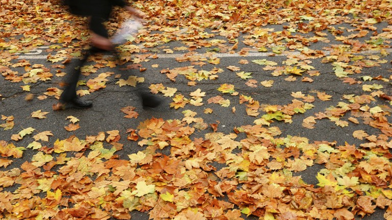A student at Westminster School walks through fallen leaves on an autumnal day in central London, November 20, 2012.